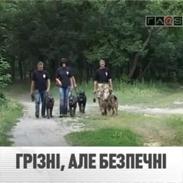 video: На страже общественного порядка. Репортаж ТРК Глас